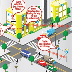 Transit Management Systems